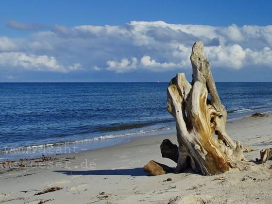 Holzskulptur am Strand
