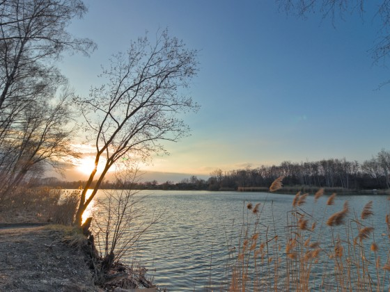 Hainbergsee in Meuselwitz