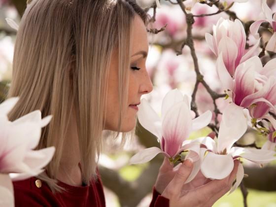 Der Zauber einer Blüte