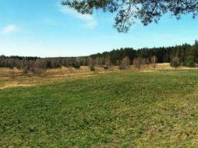 Moorlandschaft bei Klosterlausnitz(Pano aus 3 Bildern)