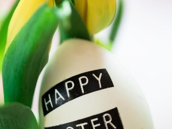 Frohe Ostern Euch allen