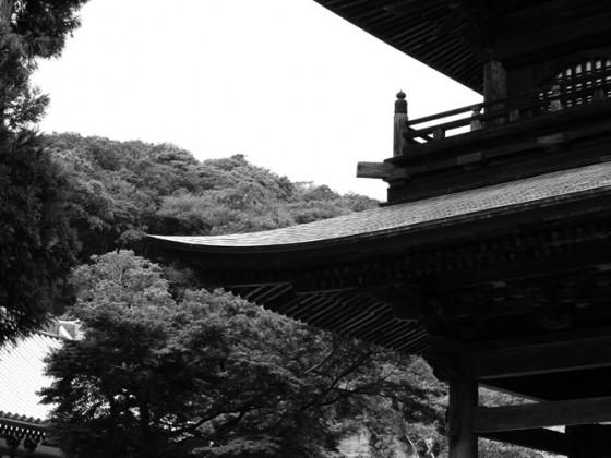 Japan 2014